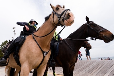 Police horses pose on St Kilda Beach during the final days of the worlds toughest and longest COVID-19 restrictions in St Kilda.  With 21 days of zero new cases, Premier Daniel Andrews is expected to announce major easing of restrictions, including masks, at his press conference on Sunday.