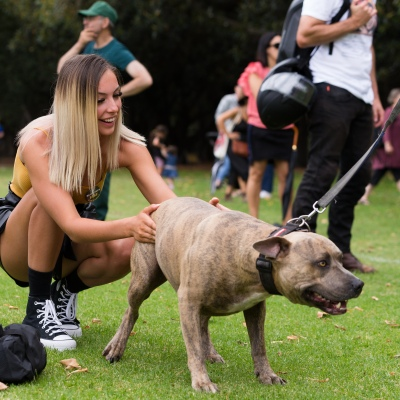 A protestor stops to pet a dog during a protest in response to mandatory COVID-19 vaccinations at Fawkner Park on February 20, 2021 in Melbourne, Victoria Australia. Up to 680,000 people are set to receive the first lot of Pfizer/BioNTech vaccinations. Hotel quarantine, health hotel workers, airport and port workers, high-risk frontline health staff and public sector residential aged care staff and residents will be the first under Phase 1A of the roll-out plan.
