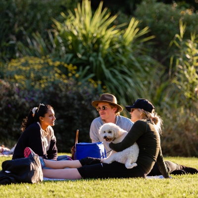 MELBOURNE, AUSTRALIA - MAY 17: Three friends and a dog enjoy the perfect Melbourne weather in the Botanical Gardens as it reopens for the first time in two months as restrictions are being eased in Victoria during COVID 19 on 17 May, 2020 in Melbourne, Australia. (Photo by Speed Media/Icon Sportswire)